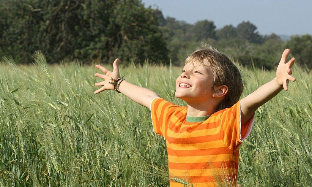 bambino felice allarga le braccia in un campo di grano
